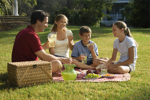The picnic does comeback. shutterstock