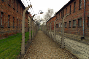 the holocaust. shutterstock