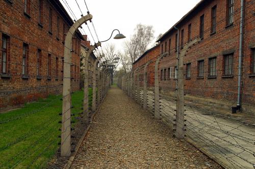the holocaust. shutterstock