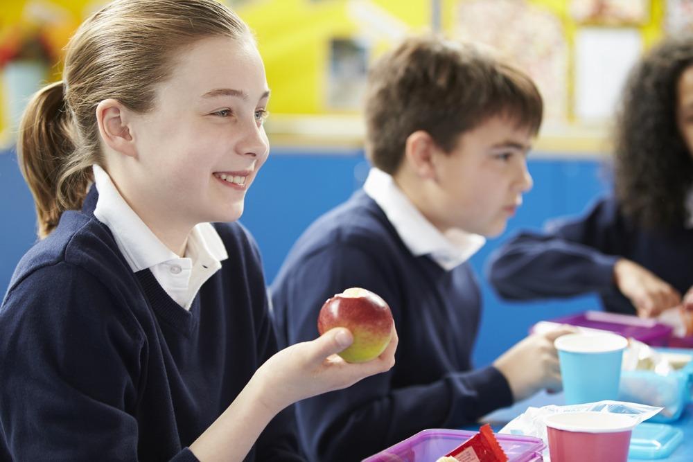 מחקר חדש: האוכל משפיע על ההצלחה בלימודים